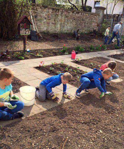 Unser Schulgarten (5): Bepflanzen der Beete