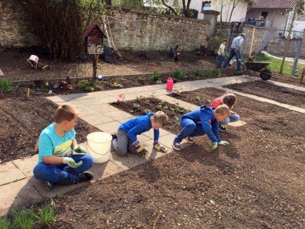 Kinder bereiten im Schulgarten die Beete vor, damit diese bepflanzt werden können.