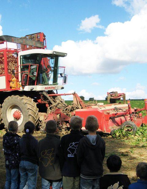 Außerschulische Lernorte: Bauernhof