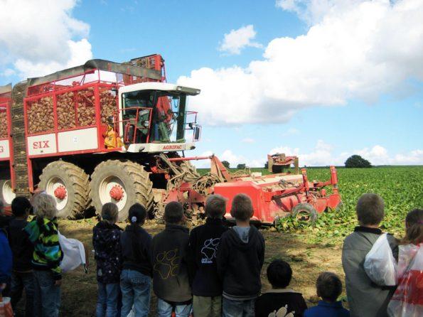 Zuckerrübenvollernter während der Ernte auf dem Feld. Mit der Schulklasse habe ich einen Bauernhof besucht.