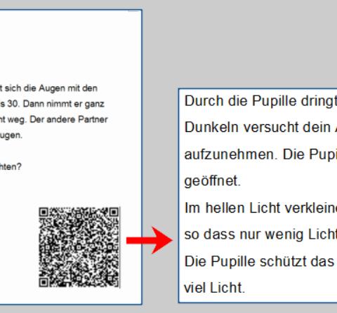 Mein neues Projekt Tabletklasse (13): QR-Codes