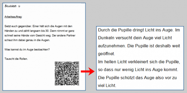 Screenshot mit einem Arbeitsauftrag zu QR-Codes aus der Tablektlasse.